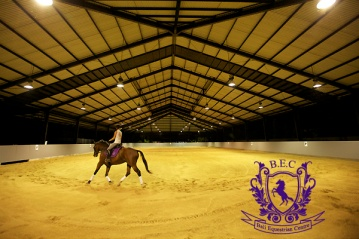 Dressage_Rucker_Equestrian_Center 3