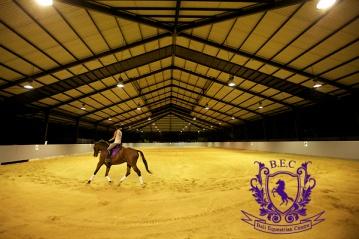 Dressage_Rucker_Equestrian_Center 3