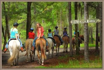 tour ranch di USA
